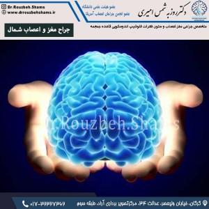 جراح مغز و اعصاب شمال